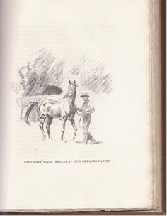 """An earlier book entitled """"The Aga Khan's Horses"""" by R. C. Lyle and beautifully illustrated by Lionel Edwards (English, b. 1878, d. 1966)  and published in April of 1938. This sketch is of Bahram, undefeated winner of the English Triple Crown in 1935, who was foaled in Ireland at the Aga Khan's stud."""