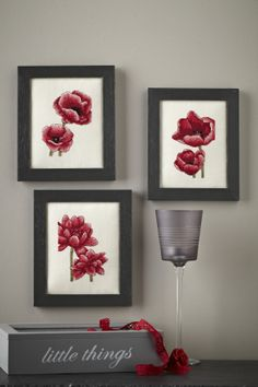 Radiant reds: Anchor's exclusive charts are perfect Valentines stitching! Find three flower charts on p.5 http://www.myfavouritemagazines.co.uk/stitch-craft/cross-stitch-collection-magazine-back-issues/cross-stitch-collection-february-14-issue-232/