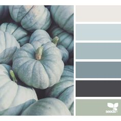 Heavenly Hues ❤ liked on Polyvore featuring color scheme and design seeds