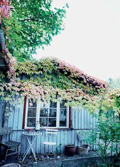 http://www.boligliv.dk/indretning/indretning/efterar-i-olgas-kolonihavehus/