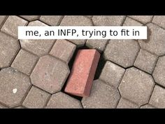 Hilarious Memes That Will Make Every Introvert Laugh Out Loud ❄ Daily News is interesting channel about shocking,, funny, and crazy facts and videos. Introvert Meme, Extroverted Introvert, Entj, Infp Personality Type, Myers Briggs Personality Types, Danette, 16 Personalities, Funny Memes, Jokes