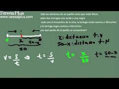 aplicación ecuaciones lineales problema de velocidad
