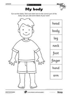 Body Parts worksheet- can use as a dictionary to label parts.: