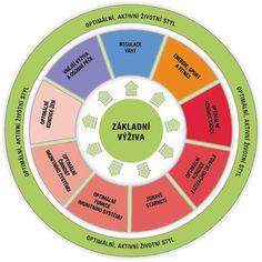 Herbalife Česká republika - kruh optimální výživy