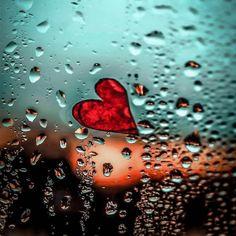 الحب هو ان تبقى القلوب على العهد حتى و إن طالت المسافات