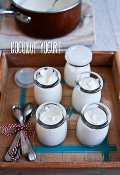 coconut yogurt recipe! make it in a warm oven using only the oven the light!