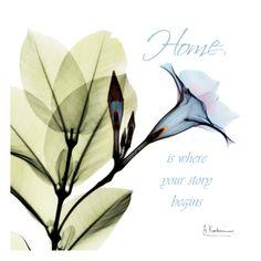 Madelia Home