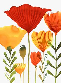 Margaret Berg Art: Orange Red Tulips