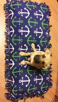 Large no sew dog bed!! Super easy. Want to make a blanket for everyone now.