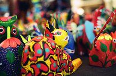 Colorful cat - Santa Fe
