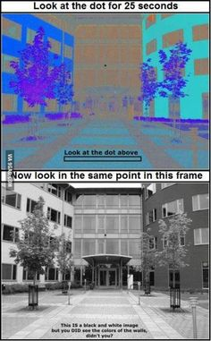 """Mind Blown!"" ... one of those cool eye tricks.  Love 'em! ...  from 9gag.com/gag/3364699"
