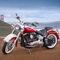 Beautiful Harley Davidson