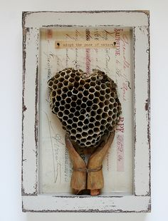"""neutralnotes:  """" Shadowbox collage—Adopt the pace of nature (by Rebecca Sower)  """""""
