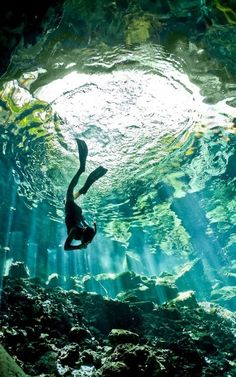 into the blue  ::  Cenote diving, Peninsula de Yucatan,