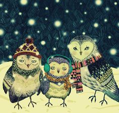 Bundled up for winter... 3 owls - by Magdalena T