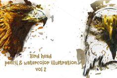 Bird Head Pencil & Watercolor vol 2 by wopras on @creativemarket