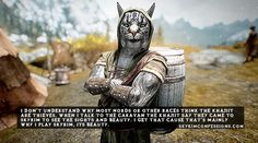 """I don't understand why most nords or other races think the khajiit are thieves. When I talk to the caravan the khajiit say they came to skyrim to see the sights and beauty. I get that cause that's..."