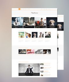 Check out our latest stunning Joomla Template! Sunflower is a clean, modern and professionally designed responsive Joomla template suitable for portfolios, blogs and magazines. Just another awesome Joomla Theme from Minitek built with the T3 Framework and Bootstrap, featuring the innovative Minitek Wall Pro.