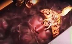 Gigantes adormecidos em câmaras de hipersono prontos para despertar revela whistleblower