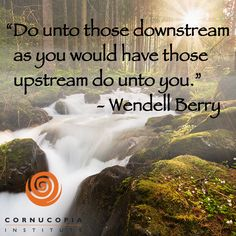 """Food for thought """"Do unto those downstream as you would have those upstream do unto you."""" - Wendell Berry"""