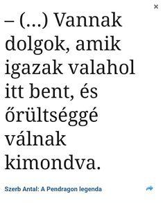 Szerb Antal Math Equations, Words