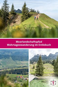 Moorlandschaftspfad Klein Entlen - Mehrtageswanderung im Entlebuch Entlebucher, Baumgarten, Switzerland, Hiking, Wanderlust, Mountains, Nature, Travel, Road Trip Destinations