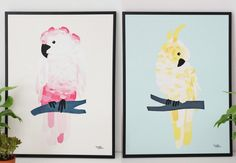 Affiche perroquet