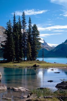 Jasper National Park in Canada is wild in every sense of the word.