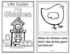 Life Cycles: The Chicken ... This item includes two 11-page student books (color and black-and-white), picture cards, an original song, and a written response activity to check for comprehension and inferential thinking. #lifecycles #chicks $