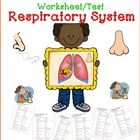 Air and Respiratory System ** Worksheet/exercise*** There are 5 parts:  1. True or False         5    items 2. Multiple choice      25  items 3. Fi...