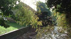 Merton Abbey Mills: The Wheelhouse
