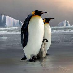 ~~The Royal Family by *Tammara~~ (Emperor Penguins)