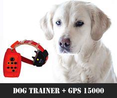 #kutya #vadászkutya #vadászat #hunter #hunting #huntingdog #kutya #dog #gps #nyomkövetés Trainers, Home Appliances, Dogs, Products, Tennis, House Appliances, Pet Dogs, Appliances, Doggies