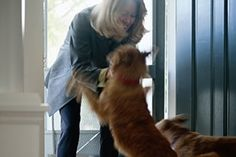 How to get your dog to stop jumping on people-woman being greeted by two dogs at front door of house (by ASPCA)