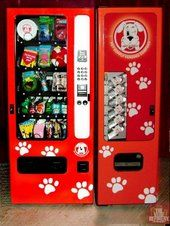 Hey Buddy – The machines are filled with treats vitamin water poop bags leashes … - dog kennel boarding Indoor Dog Park, Cheap Dog Kennels, Socializing Dogs, Pet Boarding, Animal Boarding, Boarding House, Dog Kennel Cover, Dog Yard, Stop Dog Barking