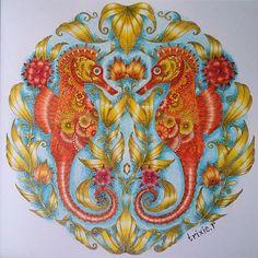 Happy Sunday  . #lostocean #lostoceancoloringbook #johannabasford #coloring #coloriage #colouring #coloringforadults #colouredpencil #coloredpencils #seahorse #heymandalas #mandala #mandalas #adultcoloring #adultcolouring #adultcoloringph #fangcolourfulworld #arte_e_colorir #prazeremcolorir #beautifulcoloring #boracolorirtop #coloring_secrets #bayan_boyan #wonderfulcoloring #mycreativeescape #coloring_masterpieces #creativelycoloring #lostoceancolors #artecomoterapia #adultcoloringforum...