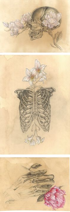 Anatomy Drawing I tried to forget But you grew roots around my ribcage And sprouted flowers Just below my collarbones. All day I pluck their petals But I have not yet ascertained Whether you love me Or not - Indie Kunst, Indie Art, Anatomy Drawing, Anatomy Art, Human Anatomy, Art Tumblr, Nature Posters, Arte Sketchbook, Plant Drawing