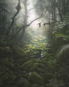 Fantasy Forest, Fantasy World, Fantasy Art, Fantasy Landscape, Landscape Art, Landscape Paintings, Scenery Pictures, Cool Pictures, Jungle Art