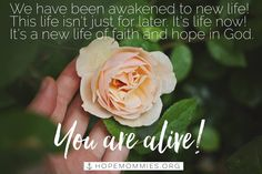 Our eternal life has already begun! Hope Mommies Identity Series on the #HMBlog   Read the full story @ hopemommies.org #HopeMommies #Stillbirth #Miscarriage #ChildLoss #InfantLoss #Grief #Hope #Faith #PregnancyLoss #grieving #miscarry