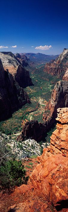 View from Observation Point, Zion National Park, Utah