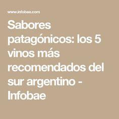 Sabores patagónicos: los 5 vinos más recomendados del sur argentino - Infobae