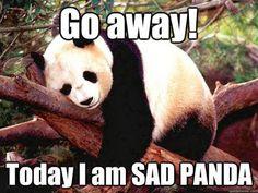 Go away Today I Am Sad Panda.  Panda in a tree.
