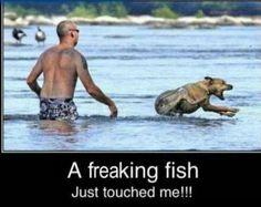 Hahahahaha!!!!!! This made me cry