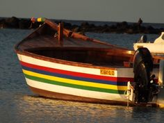Harboring the colors of our Mauritian flag.