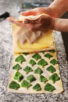 Boost the flavor of your ordinary pasta just adding som… Laminated spinach pasta .Boost the flavor of your ordinary pasta just adding some fresh herb Tortellini, Pasta Kunst, Pasta Recipes, Cooking Recipes, Detox Recipes, Sweet & Easy, Pasta Casera, Homemade Pastries, Spinach Pasta