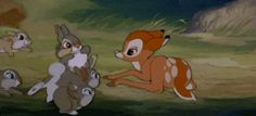 Your occasional dose of Disney interspecies friendship strikes again.