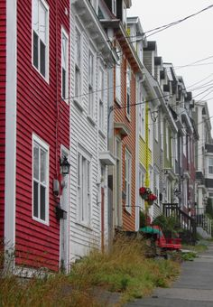 The coloured homes of St. Newfoundland Canada, Newfoundland And Labrador, Great Vacation Spots, Need A Vacation, Toronto, Canadian Travel, Canadian Art, Places To Travel, Places To See