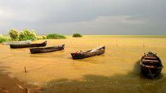 SARICHIOI Danube Delta Romania