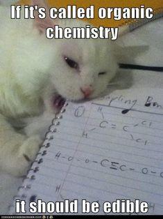 If it's called Organic Chemistry, it should be edible. Biology Memes, Math Memes, Teacher Memes, Funny Memes, Hilarious, Chemistry Puns, Science Memes, Organic Chemistry Humor, Grammar Humor