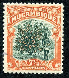 Big Blue 1840-1940: The Pictorials of Mozambique Company